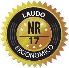 laudo-17-ergonomico