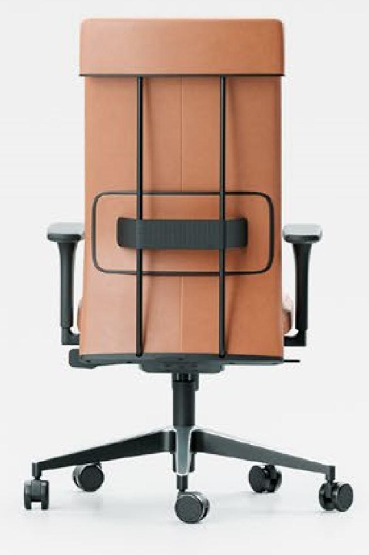 Cadeira Ergonomica Presidente LEEF costas